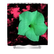 Single Green Cactus Flower Shower Curtain