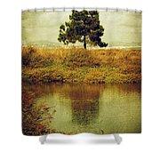 Single Pine Tree Shower Curtain by Carlos Caetano