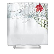 Single Red Leaf Shower Curtain