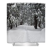 Single Track Cross Country Skiing Trail Yosemite National Park Shower Curtain
