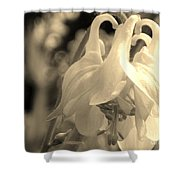 Single White Columbine Monochrome Shower Curtain