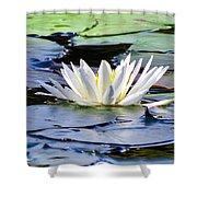 Single White Lotus Shower Curtain