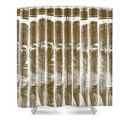 Singles In Gold Shower Curtain