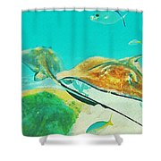 Singray City Cayman Islands Two Shower Curtain