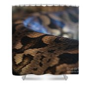 Sinti Hilha - 2 Shower Curtain