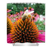 Sip Of Nectar Shower Curtain