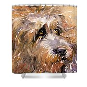 Sir Darby Shower Curtain