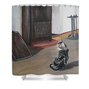 Sir Toby Shower Curtain