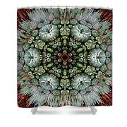 Sister Cactus Mandala Shower Curtain