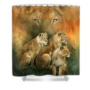 Sisterhood Of The Lions Shower Curtain