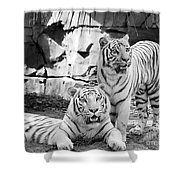 Sisters Black And White Shower Curtain