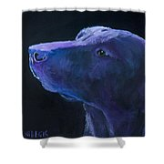 Sit Stay Shower Curtain