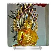 Sitting Buddha In Wat Po In Bangkok-thailand Shower Curtain