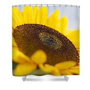 Sitting In The Sun Shower Curtain