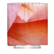 Six Degrees Of Seperation Shower Curtain