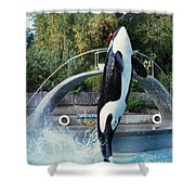 Skana Orca Vancouver Aquarium 1974 Shower Curtain