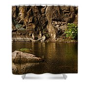 Skc 2964 The Rustic Rocks And Ripply Waters Shower Curtain