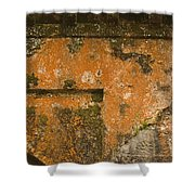 Skc 3277 Abstract By Age Shower Curtain