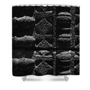 Skc 3300 Ancient Wall Art Shower Curtain