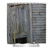 Skewed Shower Curtain