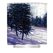 Ski Hill Shower Curtain
