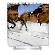 Ski Joring Race Shower Curtain