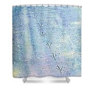 Skirting The Shoreline Shower Curtain