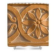 Skn 1788 The Wall Carving  Shower Curtain