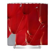 Skc 0029 Unity In Flying Shower Curtain