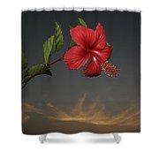 Skc 0452 Hibiscus 3 Shower Curtain