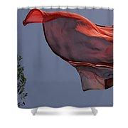 Skc 0958 Flying Saree Shower Curtain