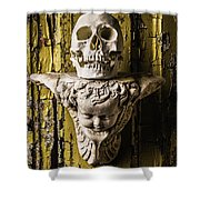 Skull And Angel Shower Curtain