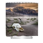 Skull In The Desert Shower Curtain