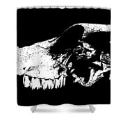 Skull Of Cow Shower Curtain