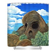 Skull Rock Shower Curtain