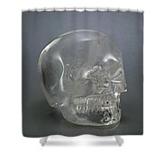 Skull Rock Crystal Shower Curtain