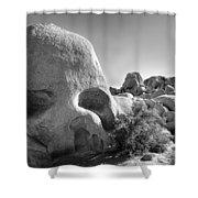 Skull Rock Shower Curtain
