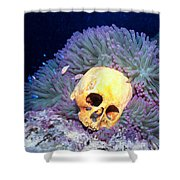 Skulls 2 Shower Curtain