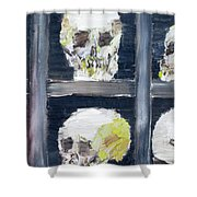 Skulls In The Crypt Shower Curtain