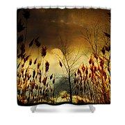 Autumn Lights Sky Colors  Shower Curtain