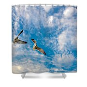 Sky Dance Shower Curtain