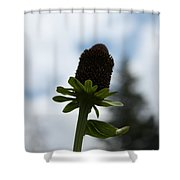 Sky Flower Shower Curtain
