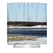 Sky Full Of Ducks Shower Curtain