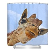 Sky High Giraffe Shower Curtain