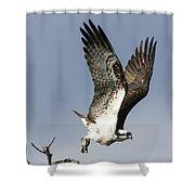 Sky Hunter Shower Curtain