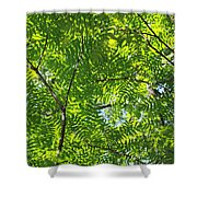 Sky Laced Shower Curtain