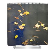 Sky Of Leaves Shower Curtain