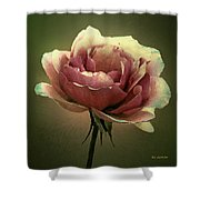 Skyblue Pink Shower Curtain