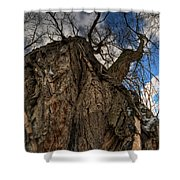 Sky's The Limit 02 Shower Curtain