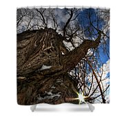 Sky's The Limit 0a Shower Curtain